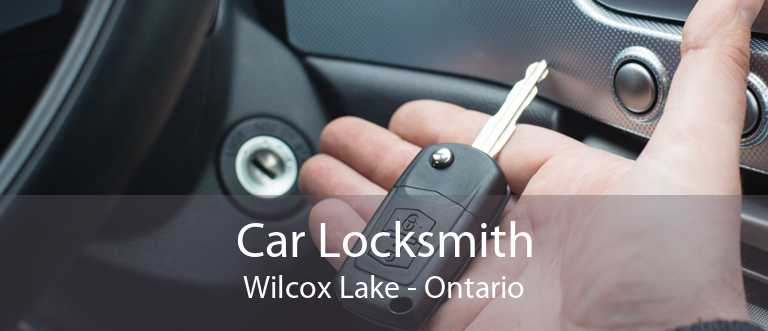 Car Locksmith Wilcox Lake - Ontario