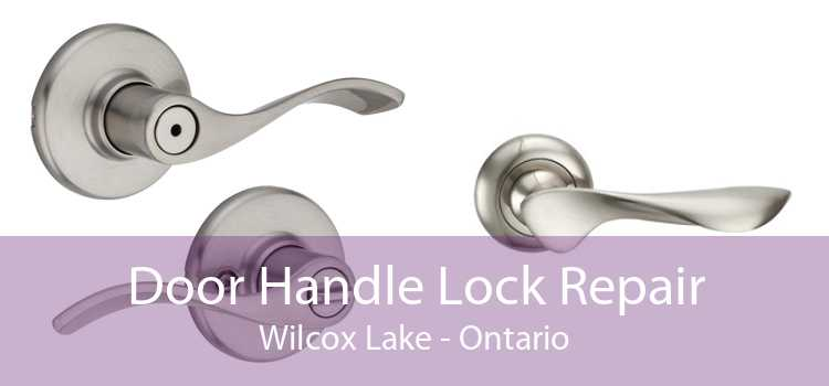 Door Handle Lock Repair Wilcox Lake - Ontario