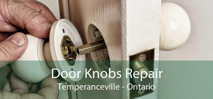 Door Knobs Repair Temperanceville - Ontario