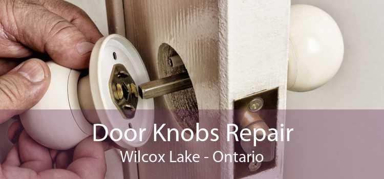 Door Knobs Repair Wilcox Lake - Ontario