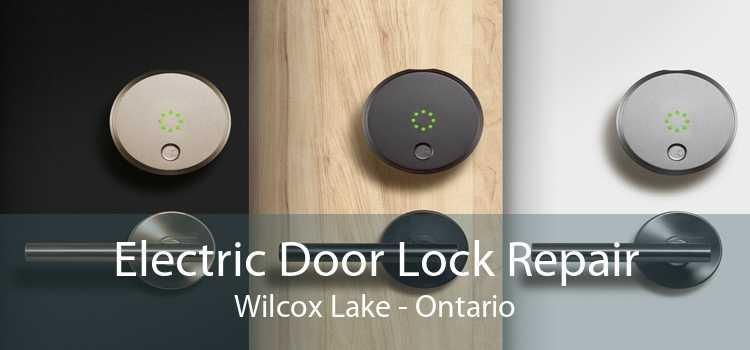 Electric Door Lock Repair Wilcox Lake - Ontario