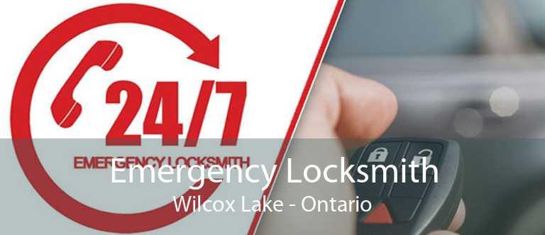 Emergency Locksmith Wilcox Lake - Ontario