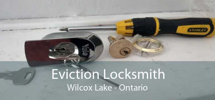 Eviction Locksmith Wilcox Lake - Ontario