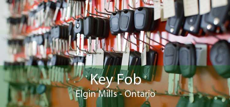 Key Fob Elgin Mills - Ontario
