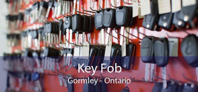 Key Fob Gormley - Ontario