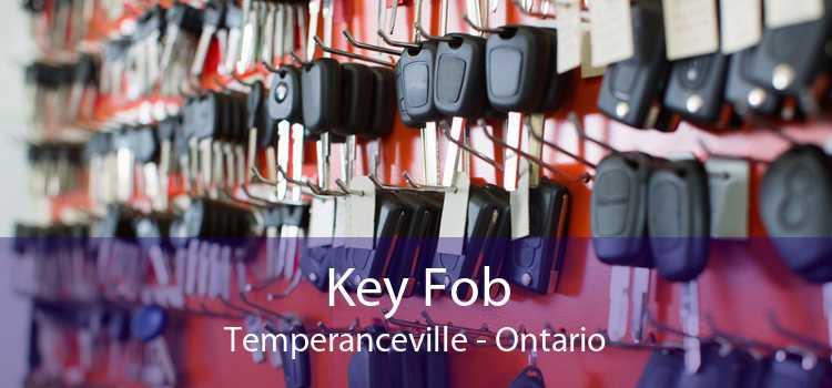 Key Fob Temperanceville - Ontario