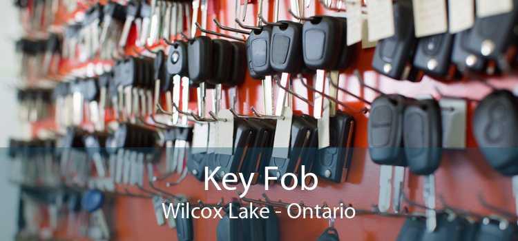 Key Fob Wilcox Lake - Ontario