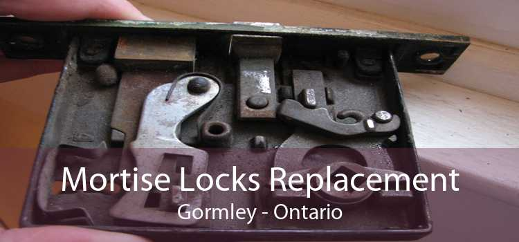 Mortise Locks Replacement Gormley - Ontario