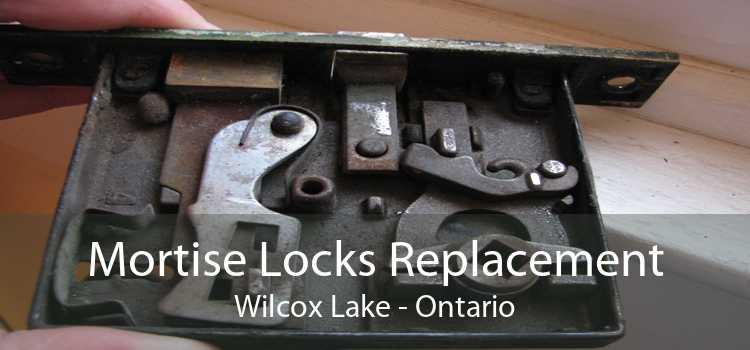 Mortise Locks Replacement Wilcox Lake - Ontario