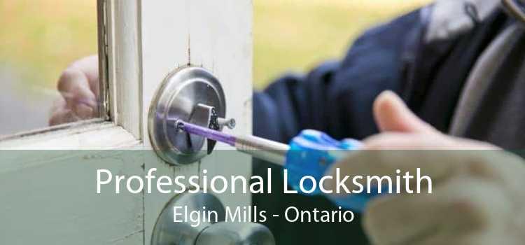 Professional Locksmith Elgin Mills - Ontario