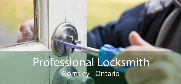 Professional Locksmith Gormley - Ontario