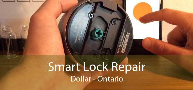 Smart Lock Repair Dollar - Ontario