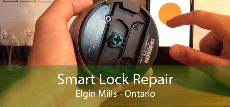 Smart Lock Repair Elgin Mills - Ontario