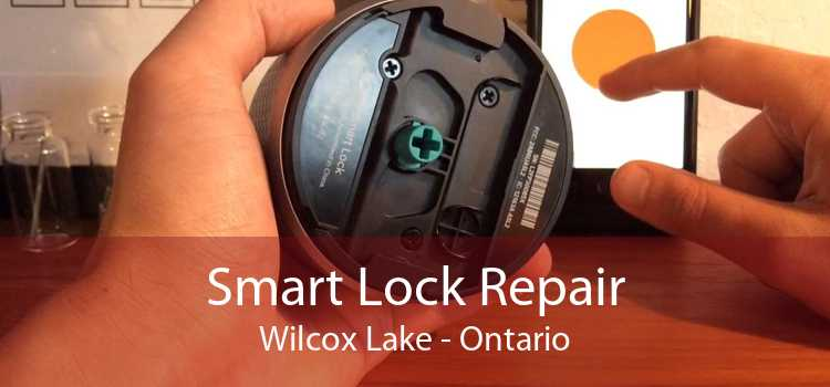 Smart Lock Repair Wilcox Lake - Ontario